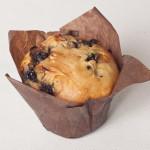 GLUTEN FREE Blueberry Muffins (df, yf, ff, sf)
