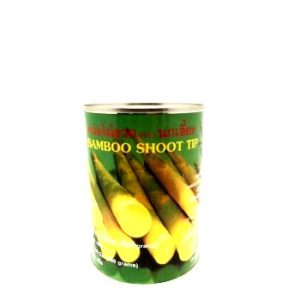 Bamboo Tips 24